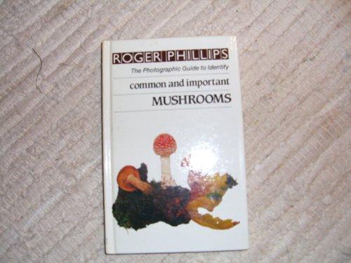 Mushrooms By Roger Phillips