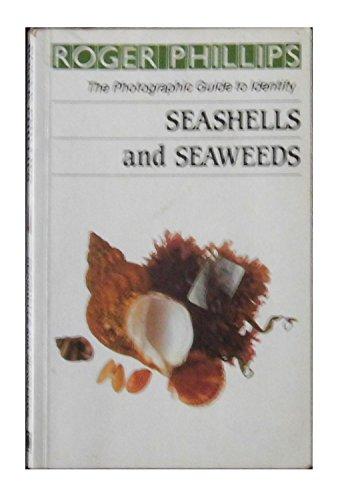 Seashells & Seaweeds By etc.