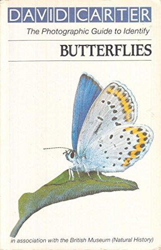 Butterflies (Roger Phillips guides) by Carter, David Paperback Book The Cheap