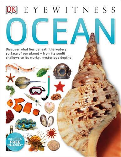 Ocean By Miranda Macquitty