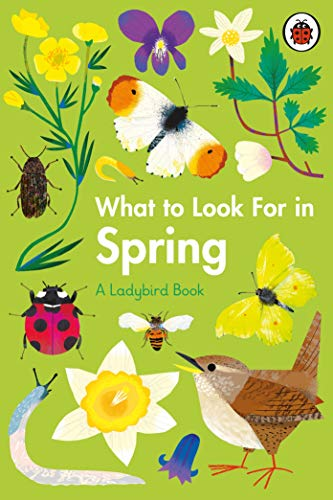 What to Look For in Spring By Elizabeth Jenner