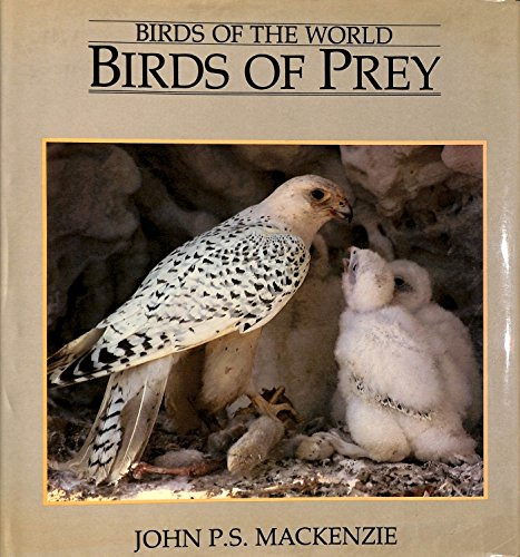 Birds of Prey By John P.S. Mackenzie