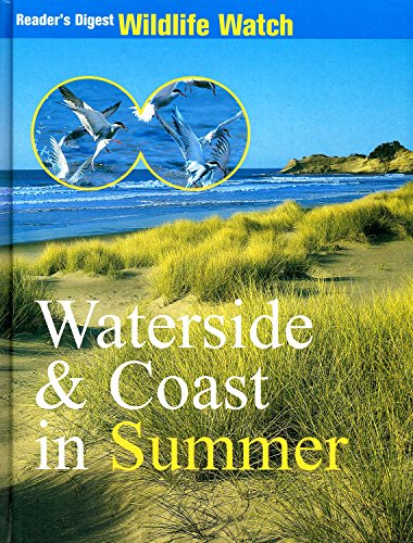 Waterside & Coast in Summer By Anonymus