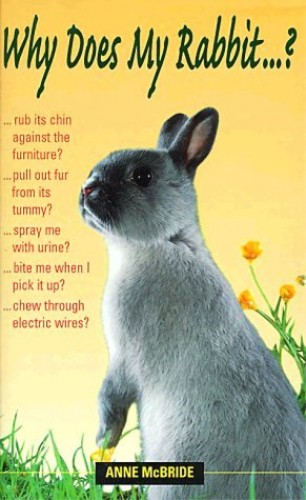 Why Does My Rabbit...? by Anne McBride