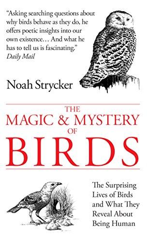 The Magic & Mystery of Birds By Noah Strycker