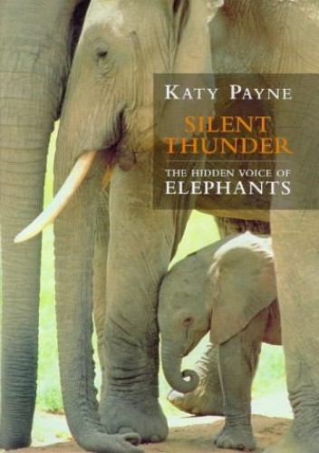 Silent Thunder: The Hidden Voice Of Elephants By Katy Payne