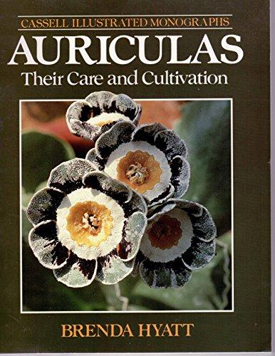 Auriculas By Brenda Hyatt