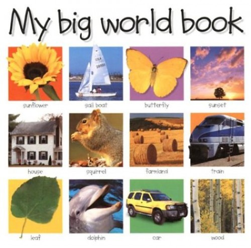 My Big World Book by Unknown Author