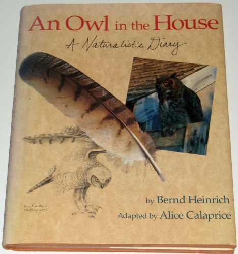An Owl in the House by Bernd Heinrich