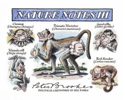 Nature Notes: The Third Collection By Peter Brookes