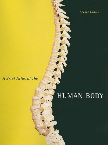 Brief Atlas of the Human Body, A By Matt Hutchinson