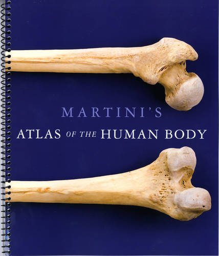 Martini's Atlas of the Human Body (ME Component) By Frederic H. Martini