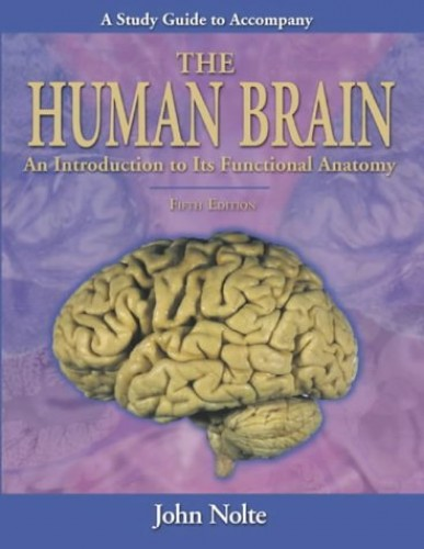 """Study Guide to Accompany The """"Human Brain"""" By John Nolte"""
