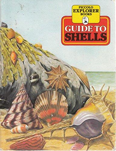 Guide to Shells By Jennifer Cochrane