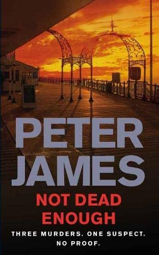 Not Dead Enough By Peter James