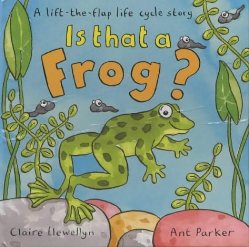 Is That A Frog? A Lift-The-Flap Lifecycle Story By Claire Llewellyn