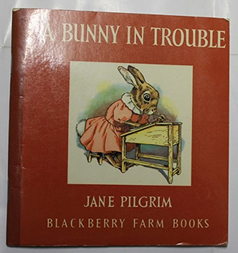 A Bunny in Trouble (Little Books) By Jane Pilgrim