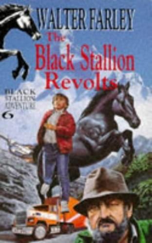 Black Stallion Revolts By Provided