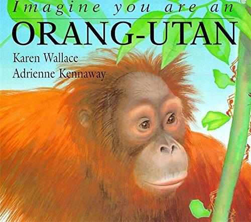 Imagine You Are An Orang-utan By Karen Wallace