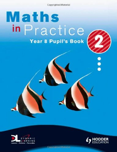 Maths in Practice By Andrew Manning