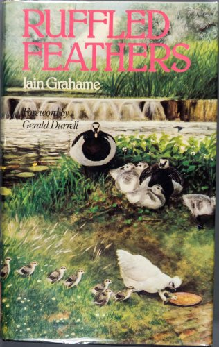 Ruffled Feathers By Iain Grahame