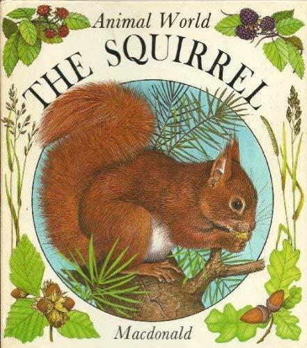 The Squirrel (Animal World) By Anne-Marie Dalmais