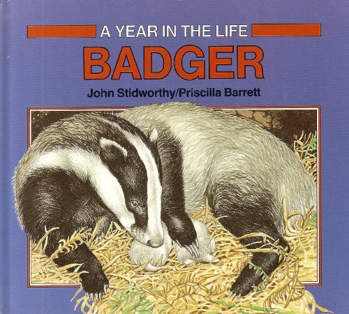 Year in the Life of: Badger (A Year in the life) By John Stidworthy