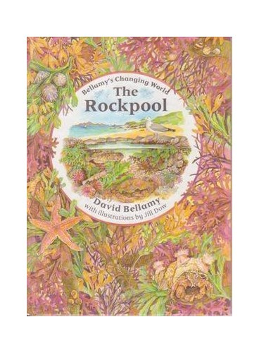 The Rockpool By David Bellamy