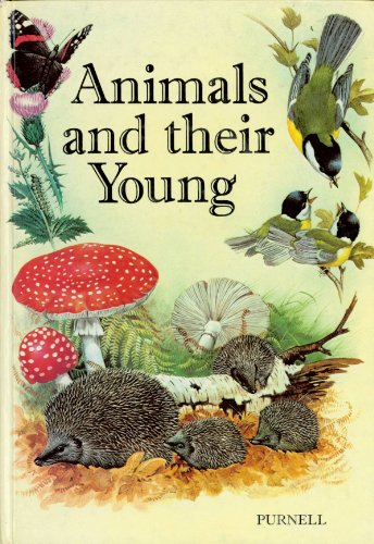Animals and Their Young By David Roberts