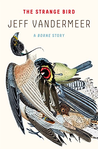 Strange Bird By Jeff VanderMeer