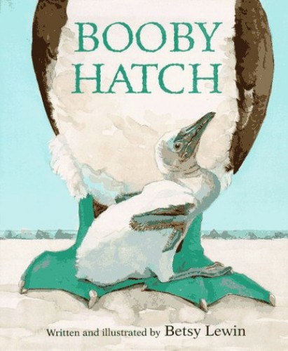 Booby Hatch By Betsy Lewin