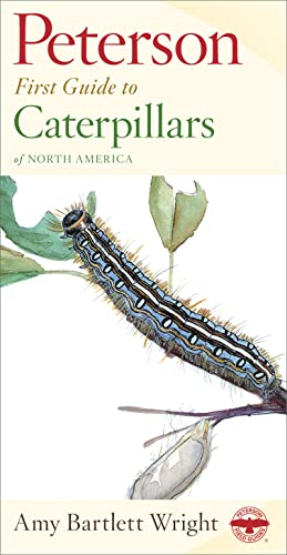 First Guide to Caterpillars (Peterson First Guides) By Roger Tory Peterson