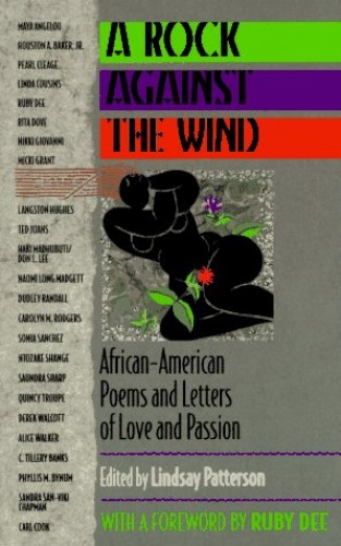 A Rock Against the Wind von Lindsay Patterson