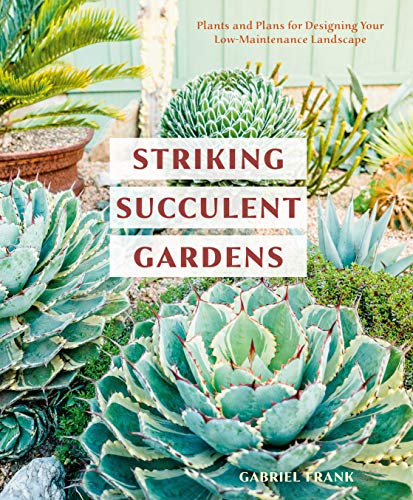 Striking Succulent Gardens By Gabriel Frank