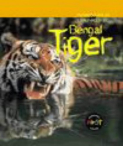 Bengal Tiger By Rod Theodorou