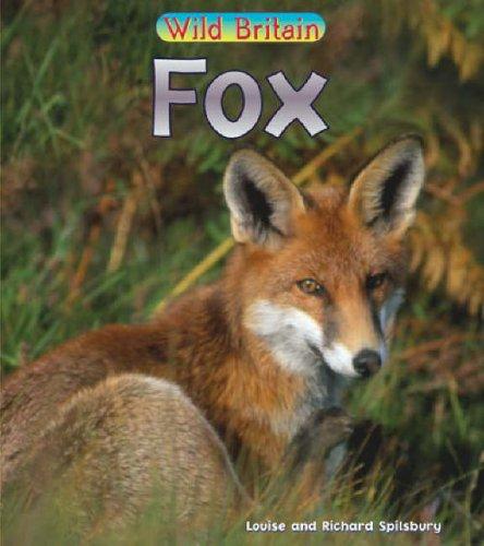 Wild Britain: Fox Paperback By Louise Spilsbury
