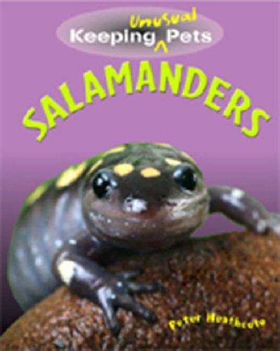 Salamanders By Peter Heathcote