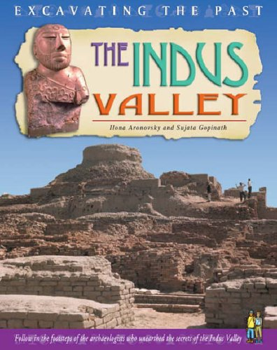 Excavating The Past: The Indus Valley Paperback By Sujata Gopinath