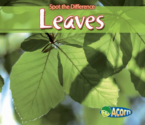 Leaves By Charlotte Guillain