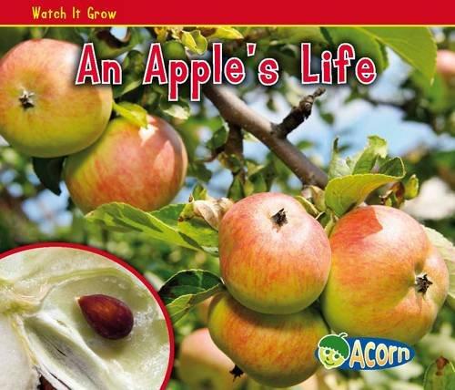 An Apple's Life By Nancy Dickmann