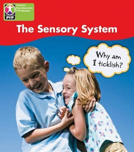 PYP L4 Sensory System 6PK