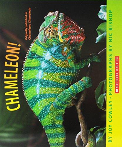 Chameleon! By Joy Cowley