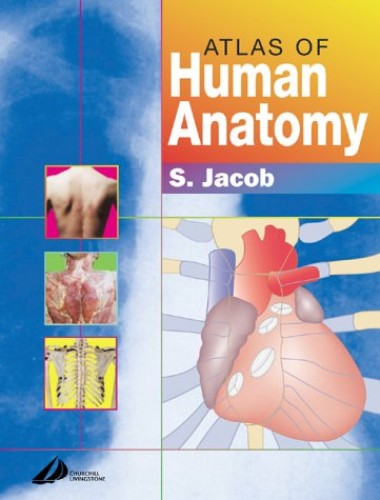 Atlas of Human Anatomy By Sam Jacob