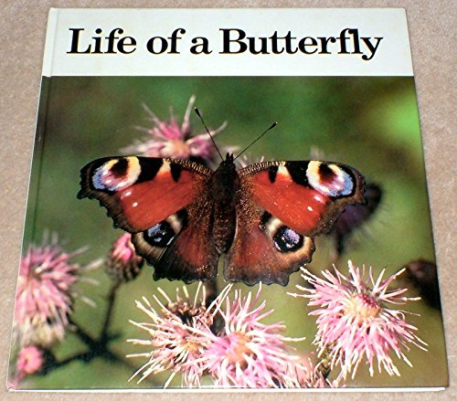 Life of a Butterfly By Andreas Fischer-Nagel