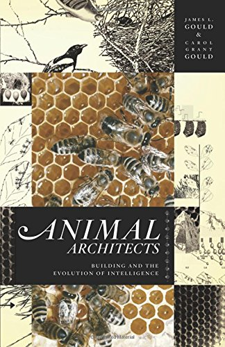 Animal Architects By James L. Gould