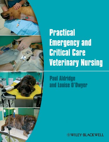 Practical Emergency and Critical Care Veterinary Nursing by Paul Aldridge
