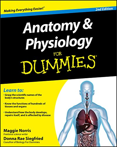 Anatomy & Physiology For Dummies by Donna Rae Siegfried