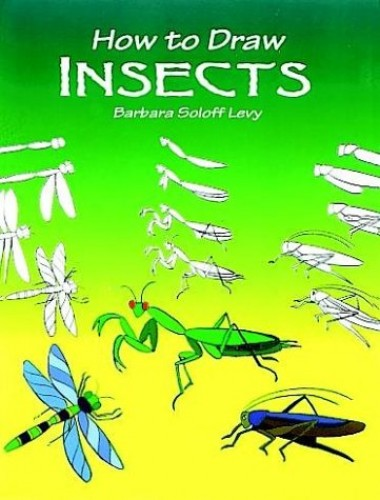 How to Draw Insects By Barbara Soloff-Levy