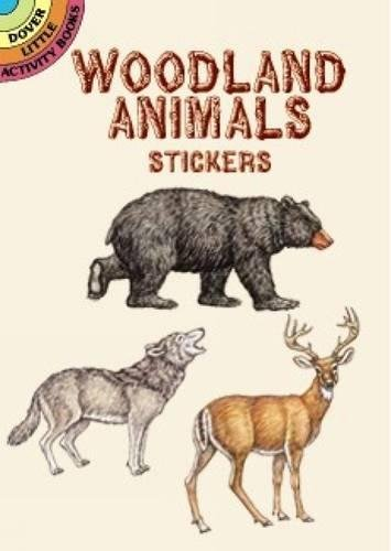Woodland Animals Stickers By Dianne Gaspas