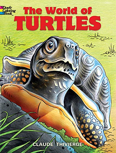 World of Turtles By Claude Thivierge